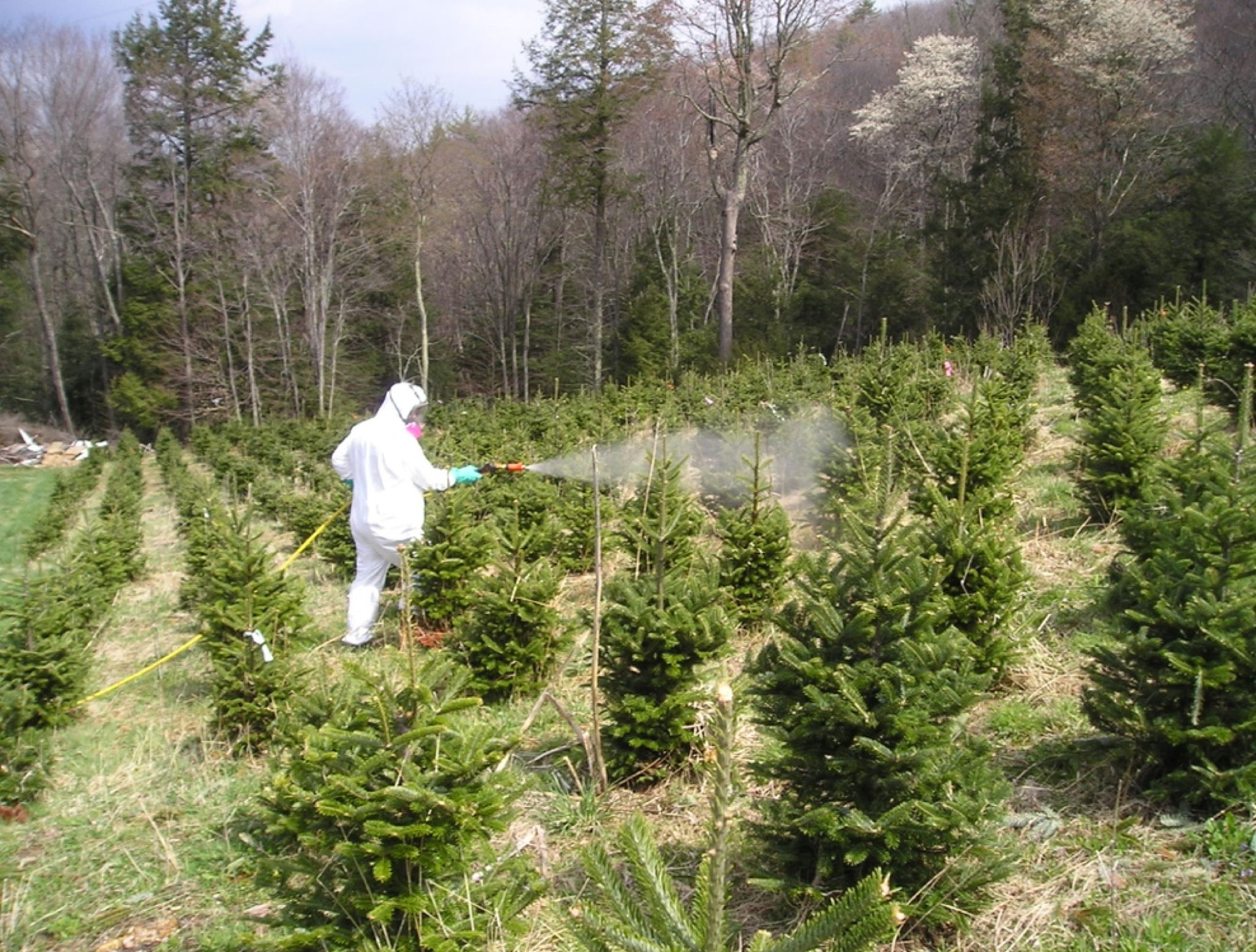 pesticide applicator spraying trees in field