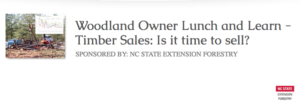 Cover photo for Woodland Owner Lunch and Learn Webinar April 9--Timber Sales