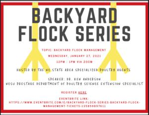 Backyard Flock Series flyer